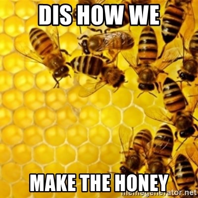 Honeybees - DIS HOW WE MAKE THE HONEY