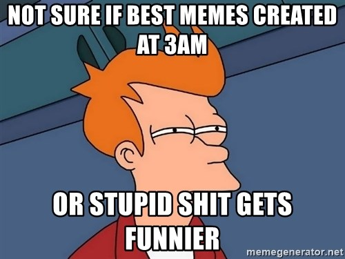 Futurama Fry - not sure if best memes created at 3am or stupid shit gets funnier
