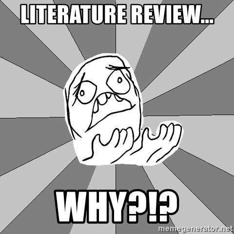 Whyyy??? - Literature review... why?!?
