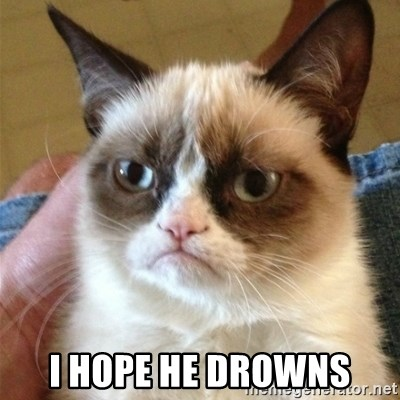 Grumpy Cat  -  i hope he drowns