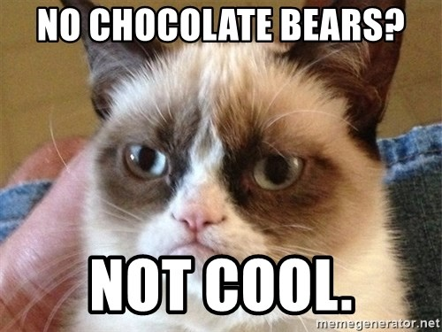 Angry Cat Meme - No CHOCOLATE Bears?  Not Cool.