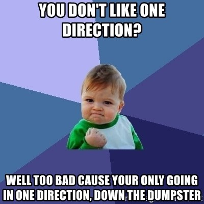 Success Kid - YOU DON'T LIKE ONE DIRECTION? WELL TOO BAD CAUSE YOUR ONLY GOING IN ONE DIRECTION, DOWN THE DUMPSTER