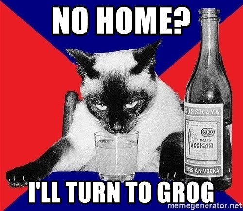 Alco-cat - no home? i'll turn to grog
