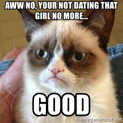 Grumpy Cat  - AWW NO, YOUR NOT DATING THAT GIRL NO MORE... GOOD