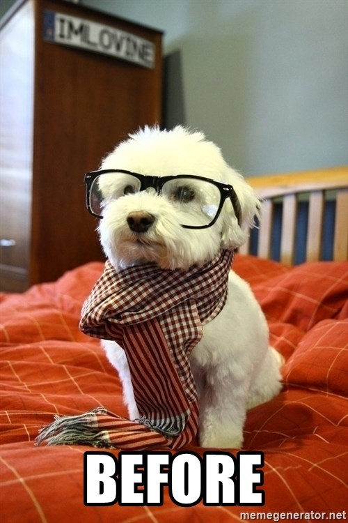 hipster dog -  before