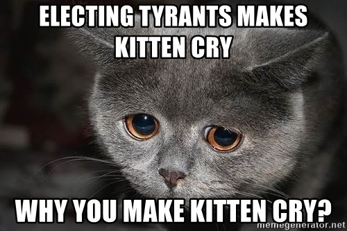 Sadcat - electing tyrants makes kitten cry why you make kitten cry?