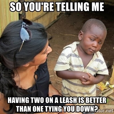 skeptical black kid - SO YOU'RE TELLING ME HAVING TWO ON A LEASH IS BETTER THAN ONE TYING YOU DOWN?