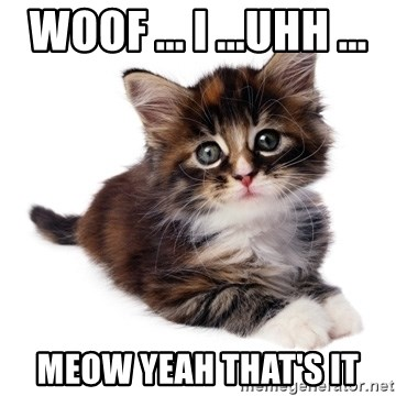 fyeahpussycats - WOOF ... I ...UHH ... MEOW YEAH THAT'S IT