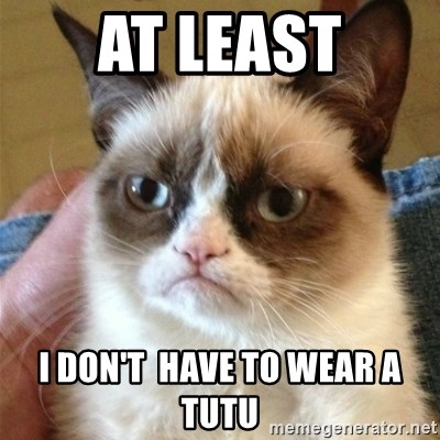 Grumpy Cat  - AT LEAST i don't  have to wear a tutu