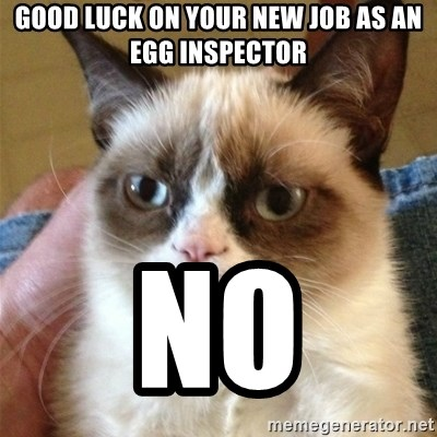 Grumpy Cat  - good luck on your new job as an egg inspector no