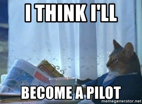 newspaper cat realization - i think i'll become a pilot