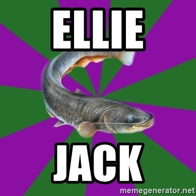 Judgemental Catfish - ELLIE JACK