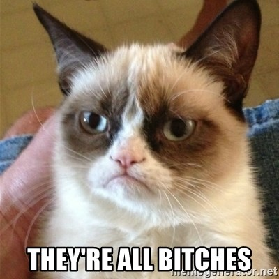 Grumpy Cat  -  tHEY'RE ALL BITCHES