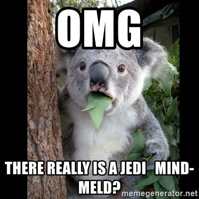 Koala can't believe it - OMG There really is a Jedi   Mind-meld?