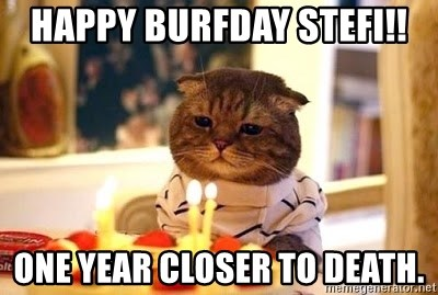 Birthday Cat - HapPy burfday stefi!! one year closer to death.
