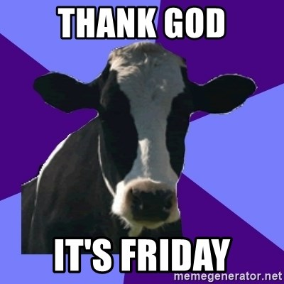 Coworker Cow - Thank god it's friday