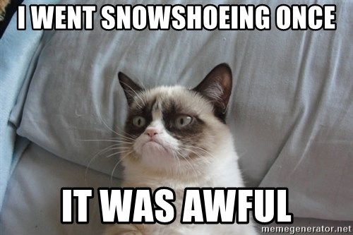 Grumpy cat good - I Went snowshoeing once it was awful