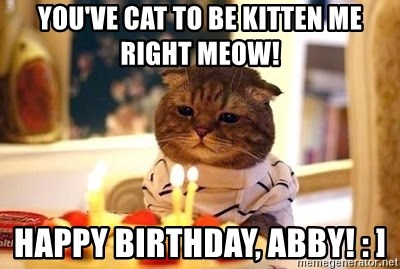 Birthday Cat - You've cat to be kitten me right meow! Happy birthday, abby! : ]