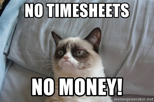 Grumpy cat good - no timesheets no money!