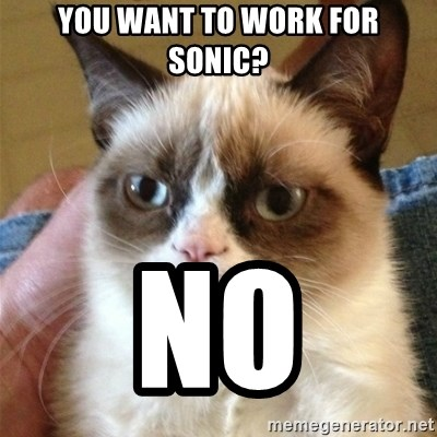 Grumpy Cat  - you want to work for sonic? NO