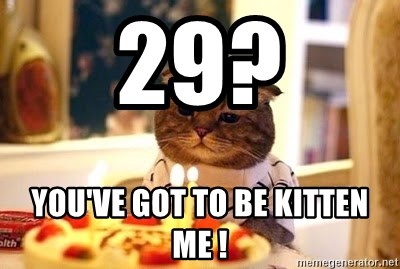 Birthday Cat - 29? You've got to be kItten me !