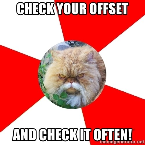Diabetic Cat - CHECK YOUR OFFSET AND CHECK IT OFTEN!