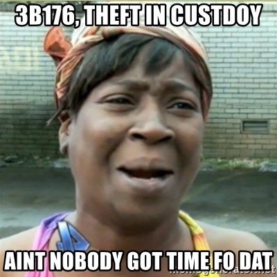 Ain't Nobody got time fo that - 3B176, THEFT IN CUSTDOY AINT NOBODY GOT TIME FO DAT