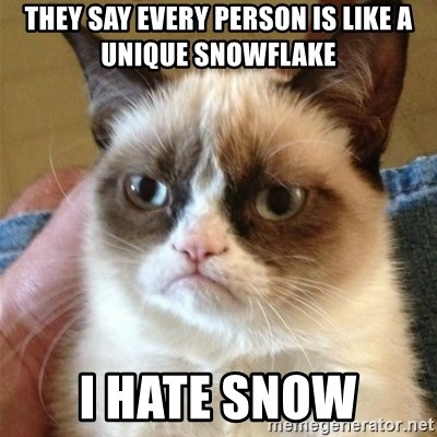 Grumpy Cat  - They say every person is like a unique snowflake i hate snow