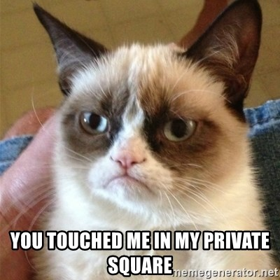 Grumpy Cat  -  you touched me in my private square