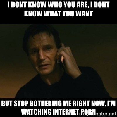 liam neeson taken - i dont know who you are, i dont know what you want but stop bothering me right now, i'm watching internet porn