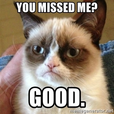 Grumpy Cat  - You missed me? good.