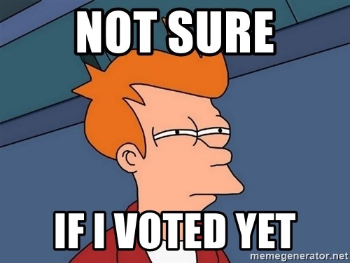 Futurama Fry - Not sure If I voted yet