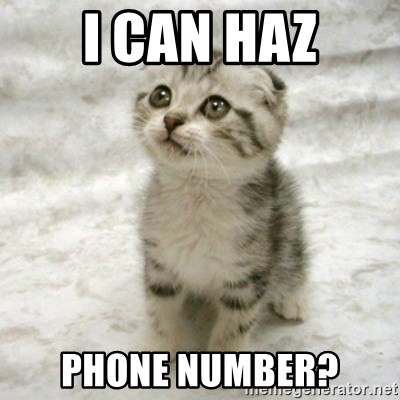Can haz cat - i can haz phone number?