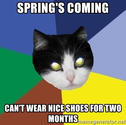 Winnipeg Cat - spring's coming can't wear nice shoes for two months