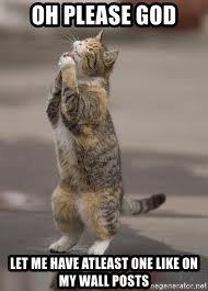 Begging Cat - oh please god let me have atleast one like on my wall posts