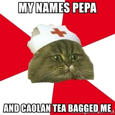 Nursing Student Cat - MY NAMES PEPA AND CAOLAN TEA BAGGED ME