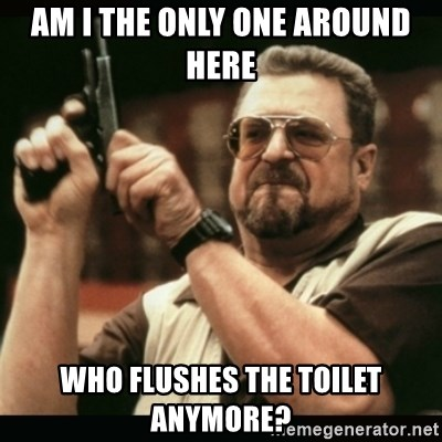 am i the only one around here - AM I THE ONLY ONE AROUND HERE WHO FLUSHES THE TOILET ANYMORE?