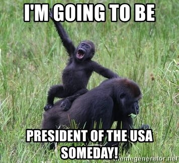 Happy Gorilla - i'm going to be president of the usa someday!