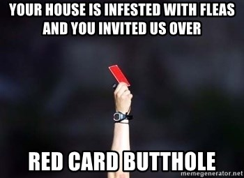 red card asshole - your house is infested with fleas and you invited us over red card butthole