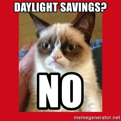 No cat - Daylight savings? No