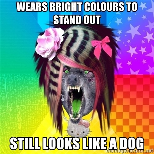 Insanity Scene Wolf - wears bright colours to stand out still looks like a dog