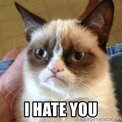 Grumpy Cat  -  I hate You