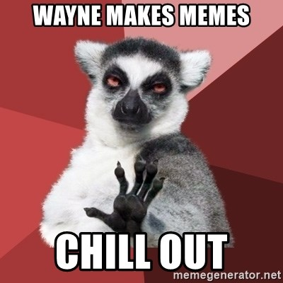 Chill Out Lemur - WAYNE MAKES MEMES CHILL OUT