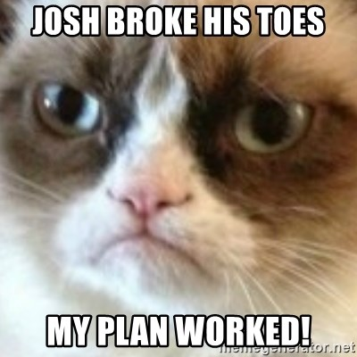 angry cat asshole - Josh broke his Toes My plan worked!