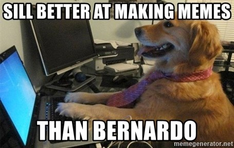 I have no idea what I'm doing - Dog with Tie - SILL BETTER AT MAKING MEMES THAN BERNARDO