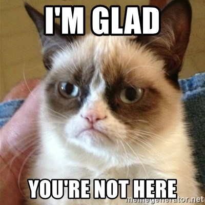 Grumpy Cat  - I'm glad you're not here