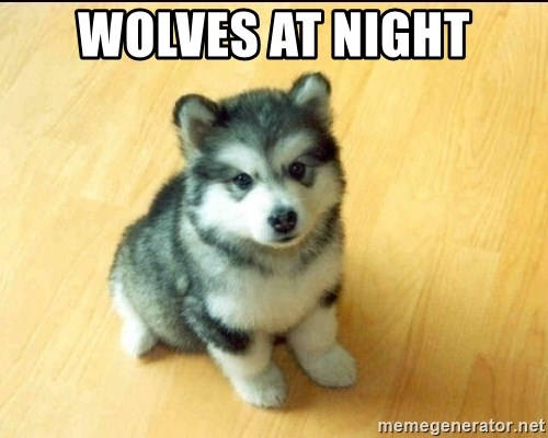 Baby Courage Wolf - wolves at night