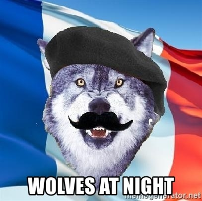 Monsieur Le Courage Wolf -  wolves at night