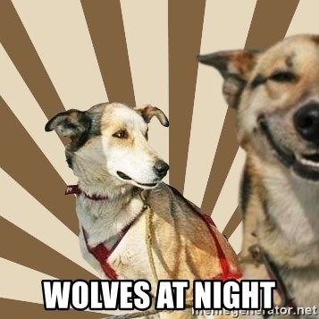 Stoner dogs concerned friend -  wolves at night