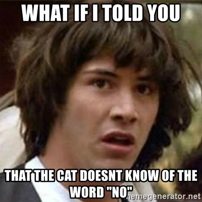 """what if meme - What if i told you that the cat doesnt know of the word """"no"""""""